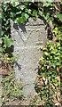 WV2676 : Old Milestone, Route des Paysans (Ancien jalon) by Tim Jenkinson
