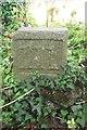 WV2976 : Old Milestone, Bouillon Road (Ancien jalon) by Tim Jenkinson