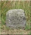 WV3382 : Old Milestone, L'Ancresse Road (Ancien jalon) by Tim Jenkinson
